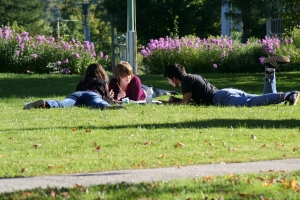 Three students lying down on the green lawn