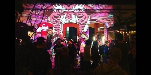 a crowd of people standing in front of a projection of a pink tiger on a wall