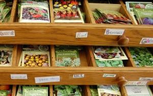 Bennington College Seed library