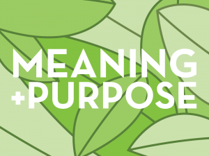 Meaning and Purpose image