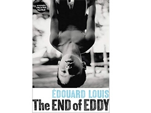 Cover of the End of Eddy