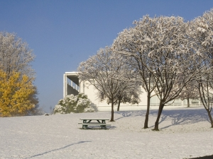 winter view of snow and trees and crossett library