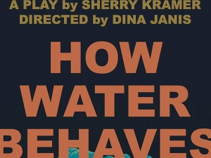 Poster for How Water Behaves