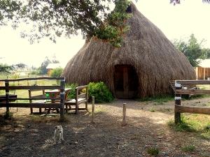 Hut in rural Patagonia