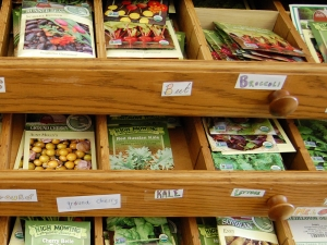 Bennington College Seed library