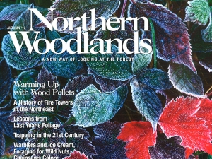 Northern Woodlands magazine cover