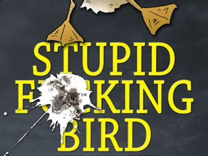 Image of stupid bird text
