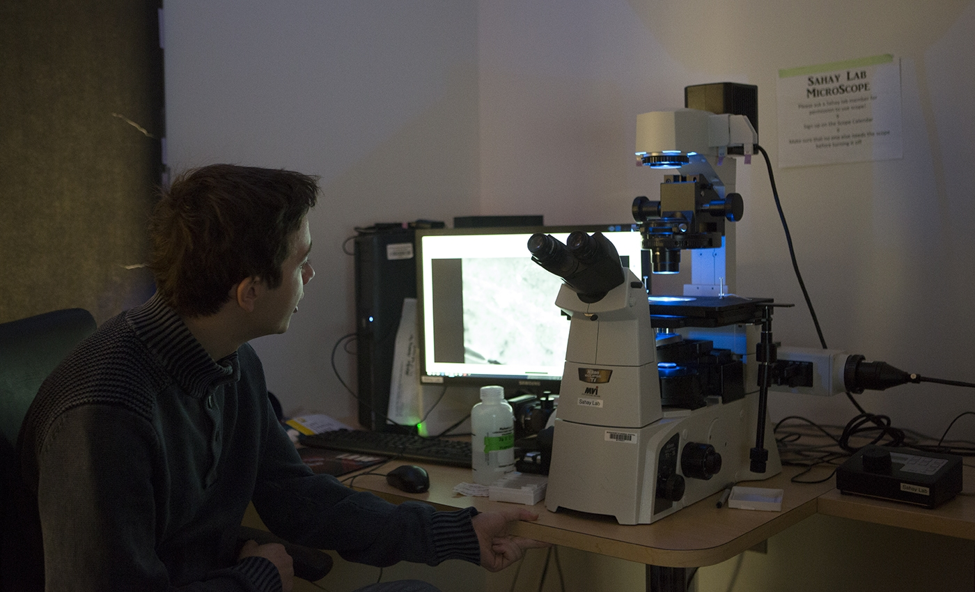 Student working at lab for field work term