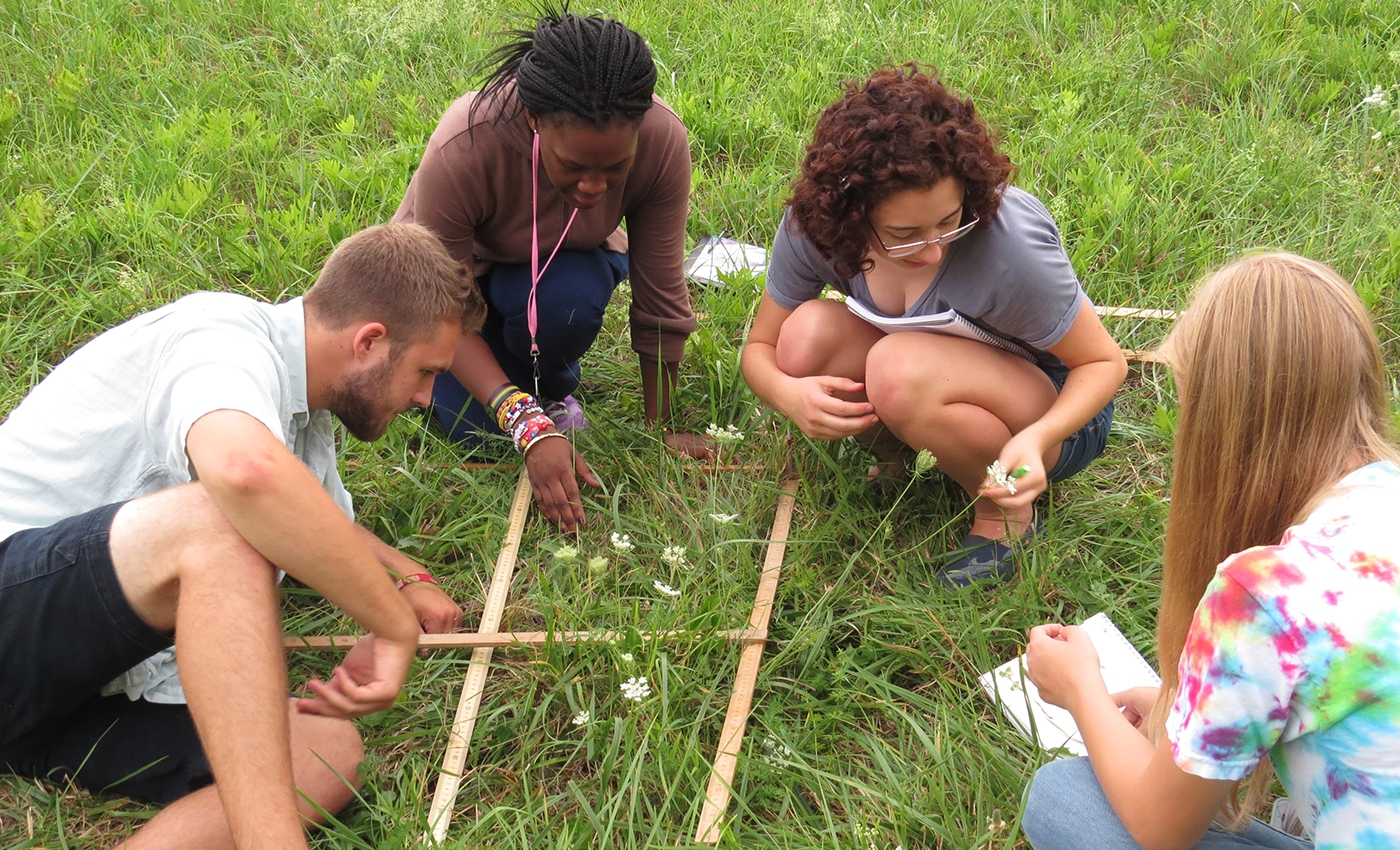 Students measuring environmental specimens found on campus