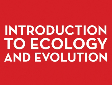 Forests: An Introduction to Ecology and Evolution