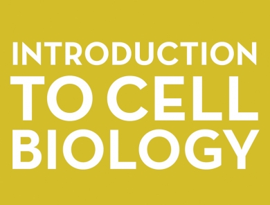Introduction to Cell Biology (with lab)