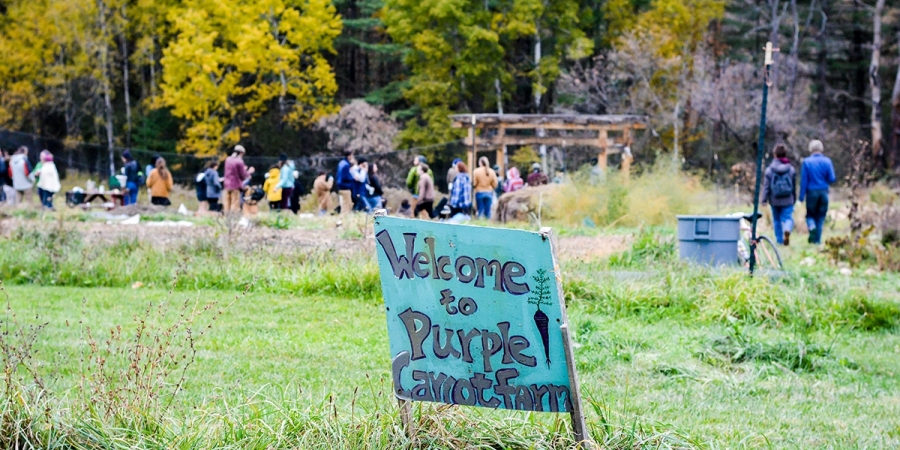 "a blue wooden sign saying ""Welcome to Purple Carrot Farm"" in a green field with a group of people gathered in the background in front of the woods"