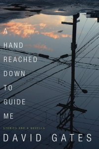 A Hand Reached Down to Guide Me(Book)