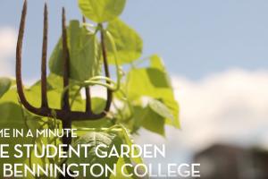 Bennington Sustainable Food Project img