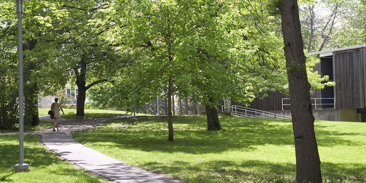 Pathway near Dickinson, with green grass and trees