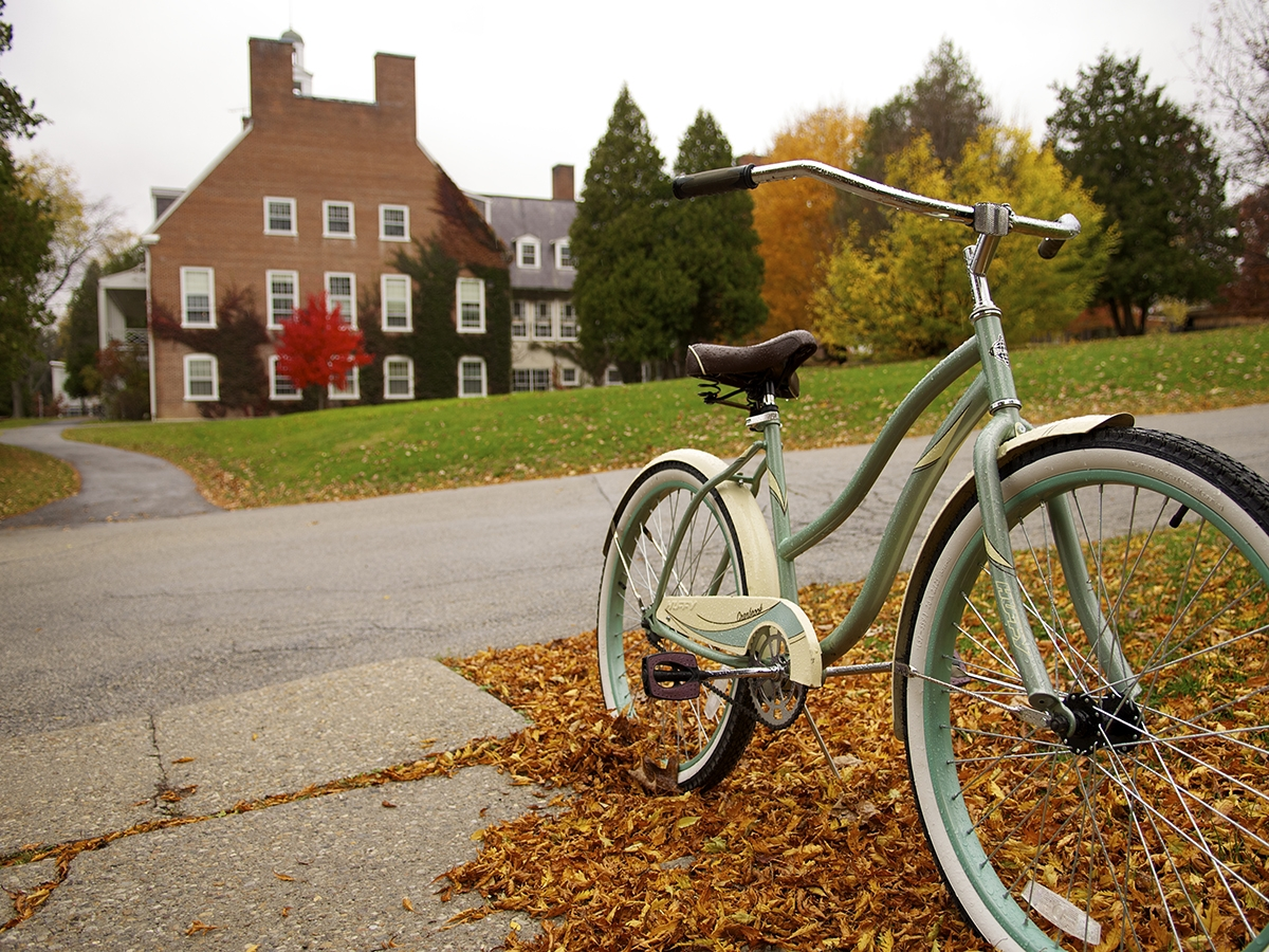 bike parked in a pile of fall leaves