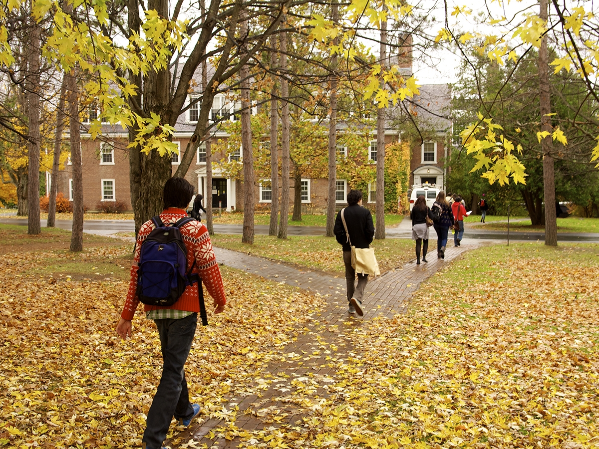 students walk to class down a path covered in fall leaves